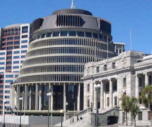 Definition of a Māori MP